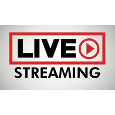 Геймърско знаме Live streaming, 60 x 100 см, за стена