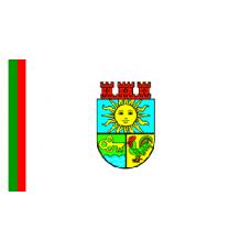 Знаме на Община Костинброд, 90 х 150 см