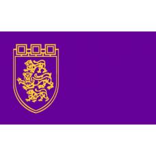 Знаме на Община Велико Търново, 90 х 150 см
