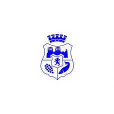 Знаме на Община Видин, 90 х 150 см